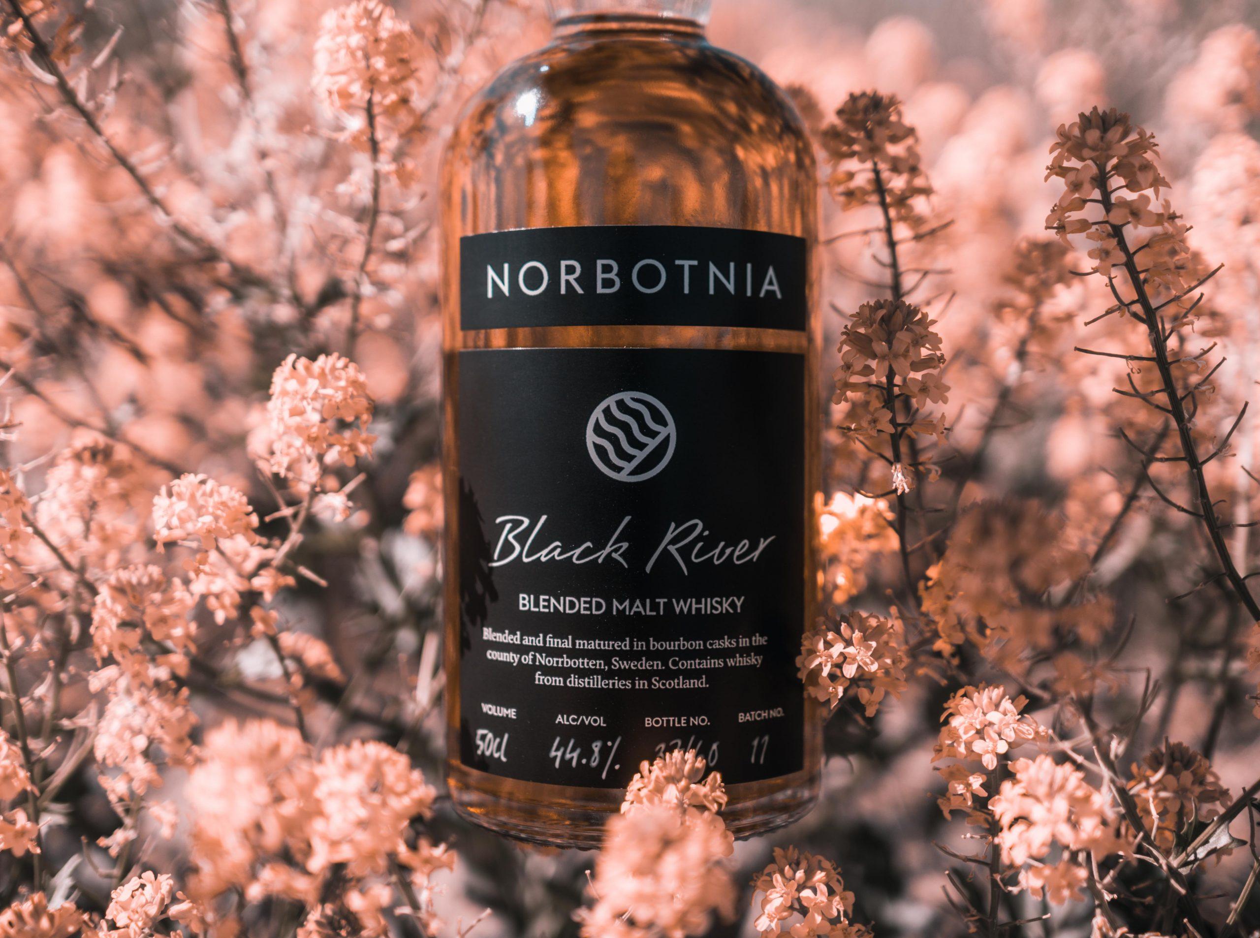 Norbotnia Black River
