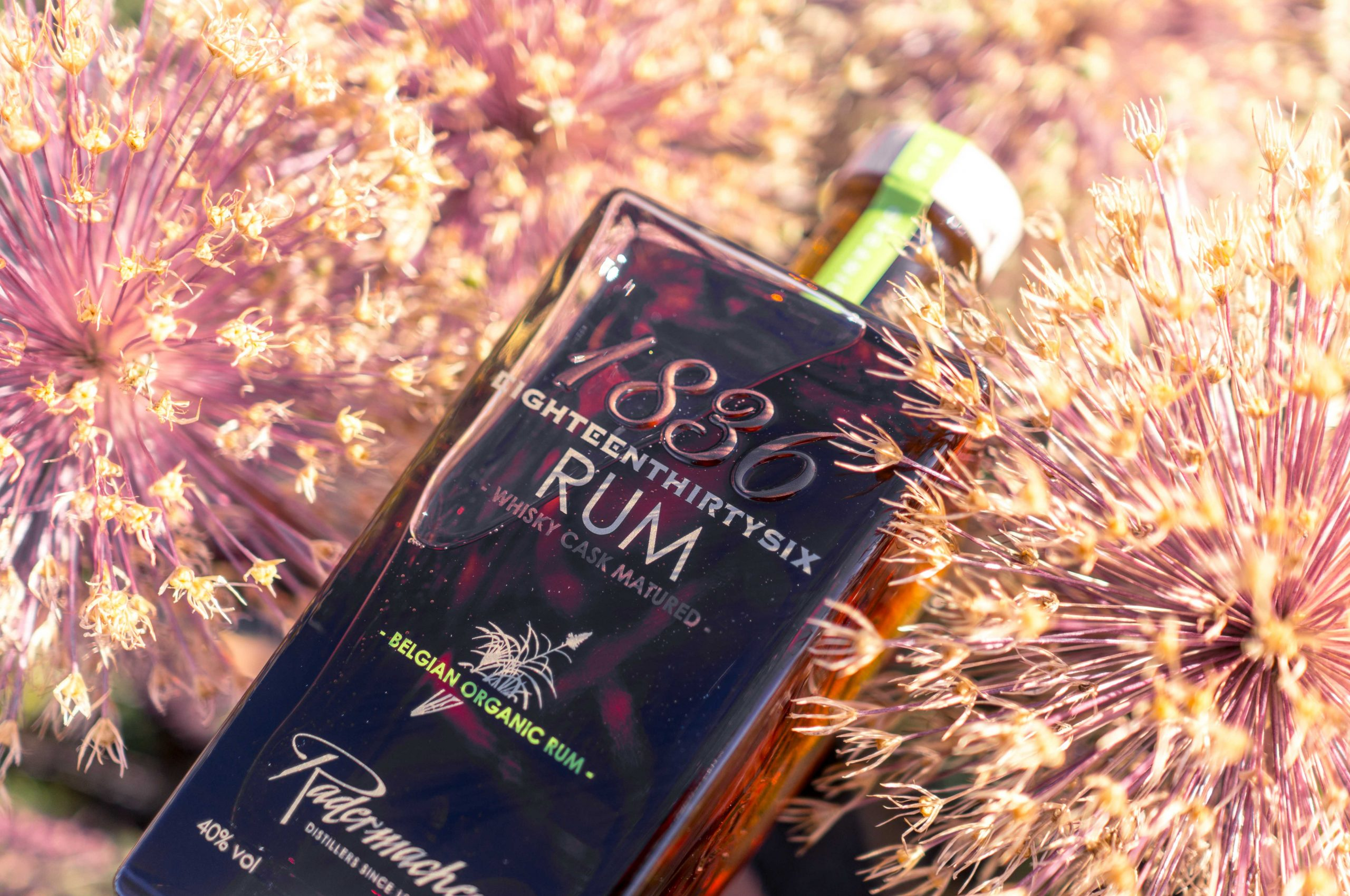 Distillerie Radermacher 1836 Rum