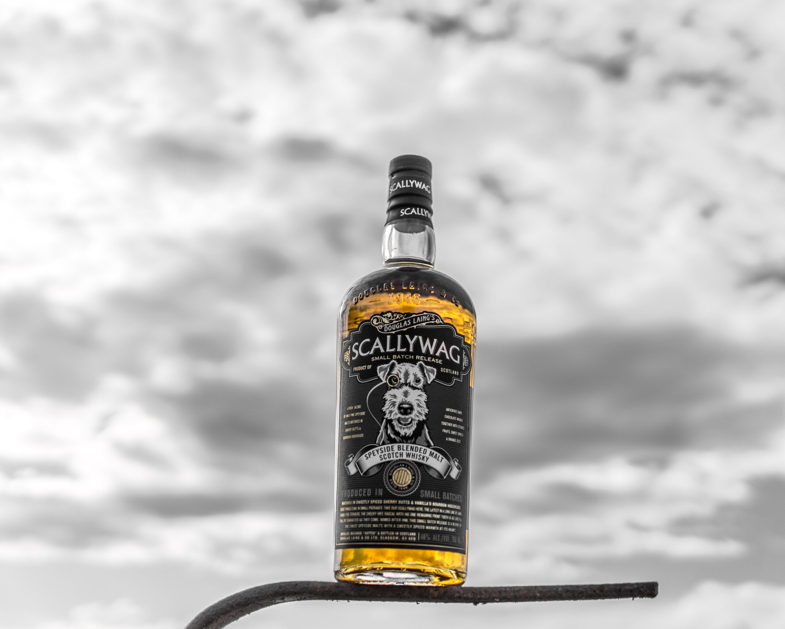 Scallywag Small batch release, Speyside blended Malt